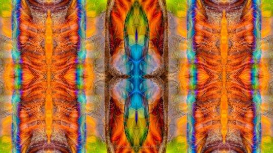 Great Spirit Abstract Pattern Artwork by Omaste Witkowski