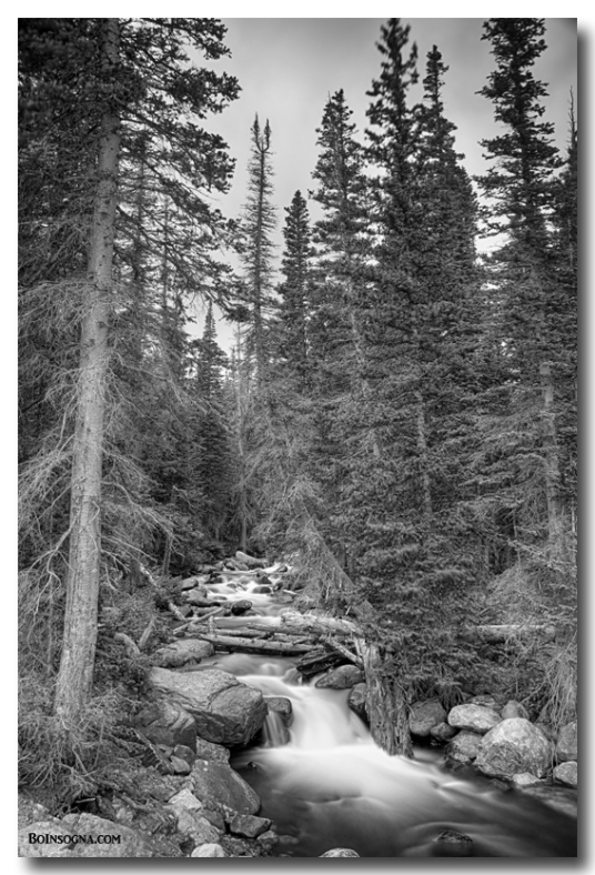 Colorado Rocky Mountain Flowing Stream BW