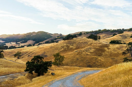 Golden California Hills Photograph