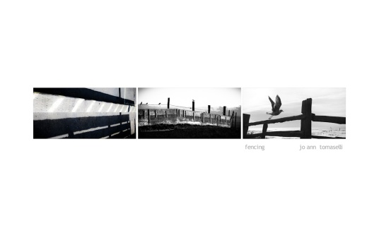 'fencing' Triptych Image Art 3 images combined to make a beautiful black and white image art of birds and fences online for sale best buy