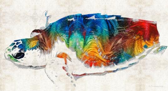 ColorfulSeaTurtleFB