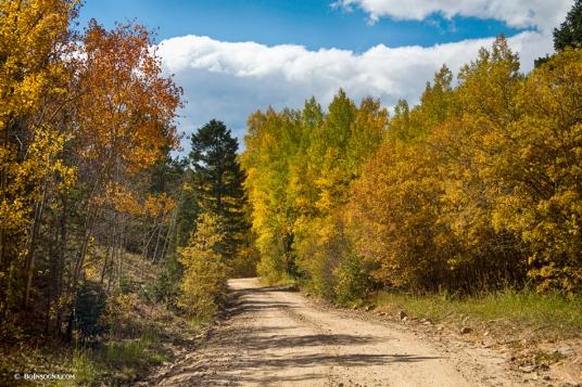 Colorado Autumn High Elevation Rocky Mountain 4 Wheeling Dirt Ro