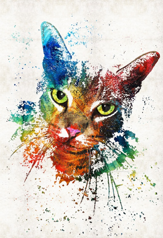 ColorfulCatFB