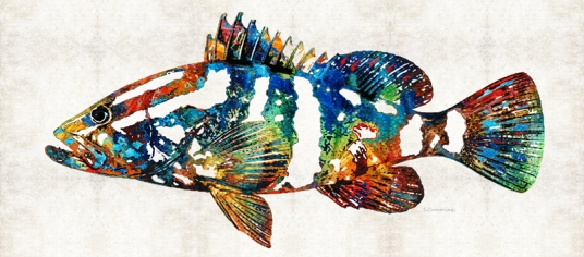 ColorfulGrouper2FB