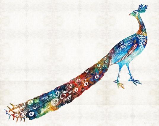 ColorfulPeacockFB