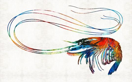 ColorfulShrimpFB