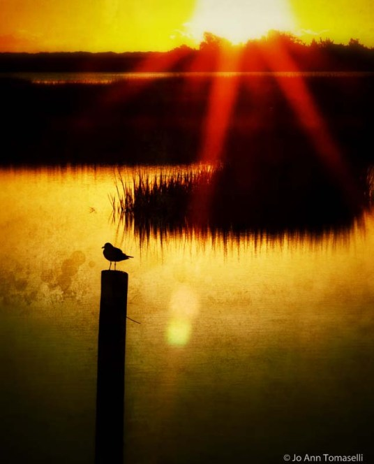 A RAY OF HOPE SUNRISE SUNSET IMAGE ART