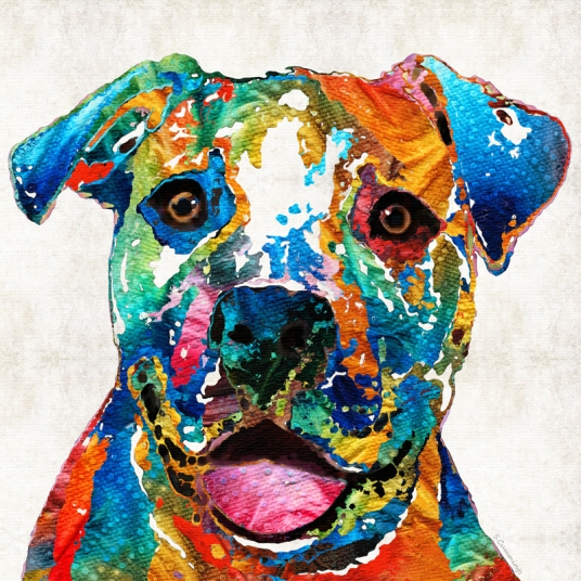 ColorfulPitbullFB