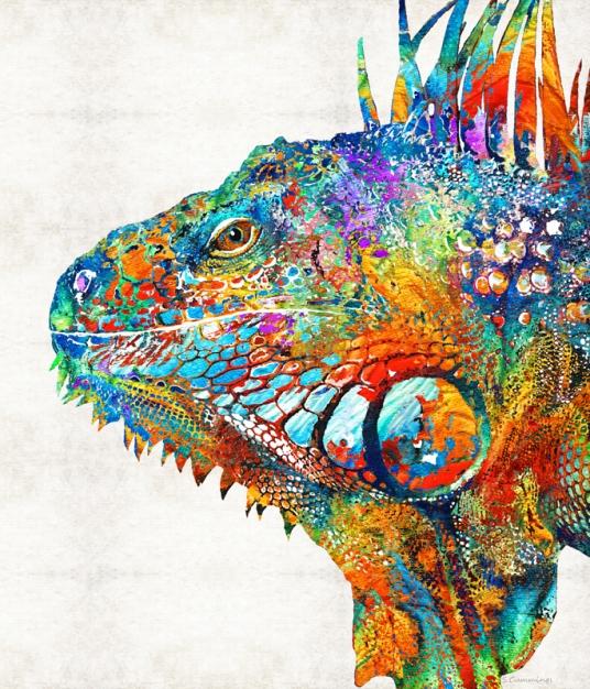 ColorfulIguanaFB