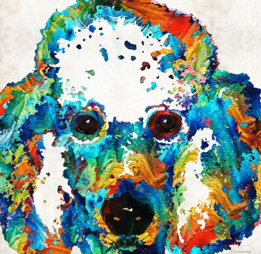 ColorfulPoodleFB