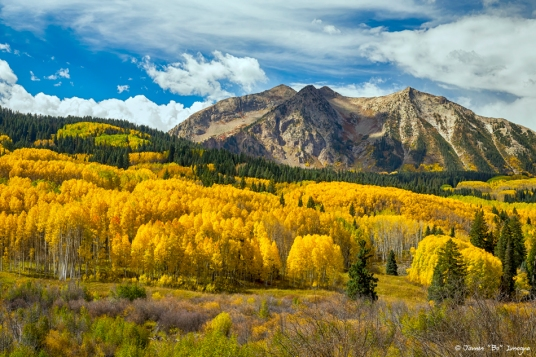 Colorado Rocky Mountain Fall Foliage art print